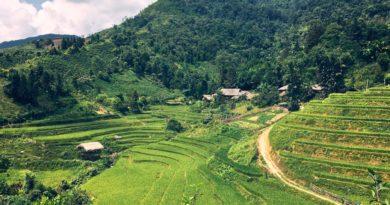 Durch die Reisterassen von Bắc Hà